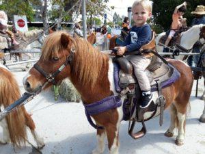 pony ride3